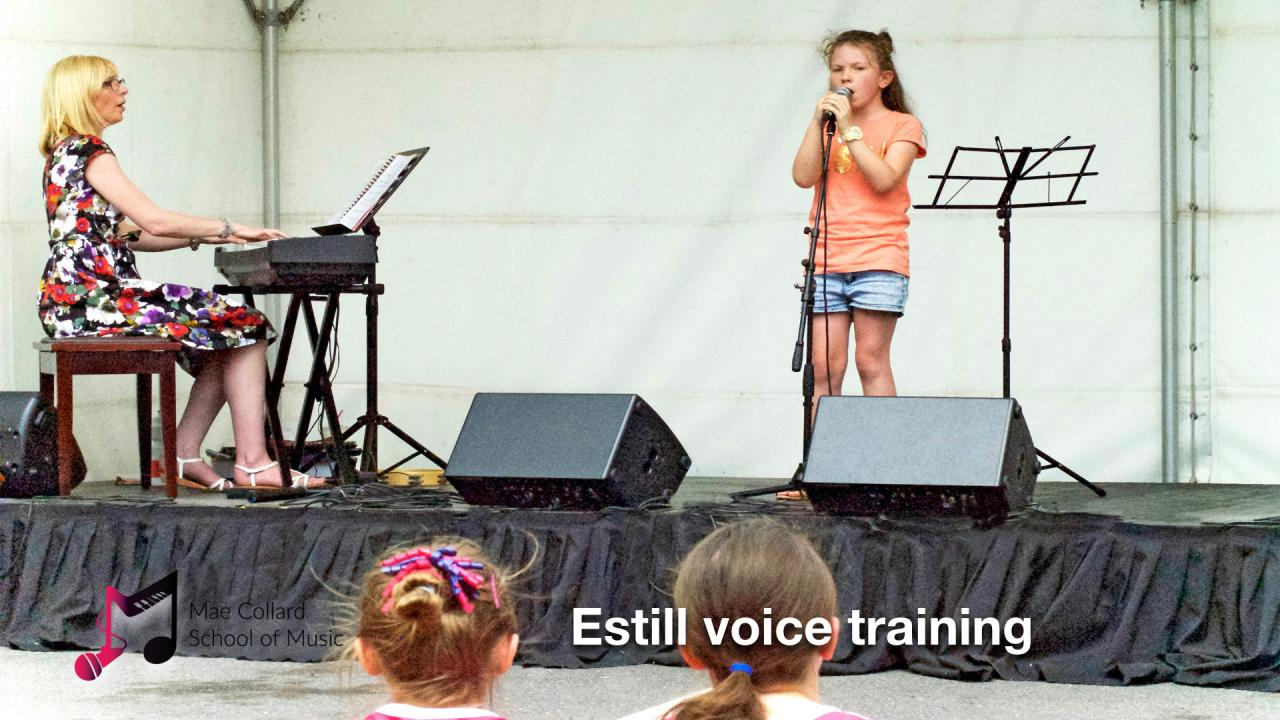Estill voice training